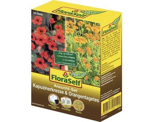 FloraSelf Set semanare coltunas/craite