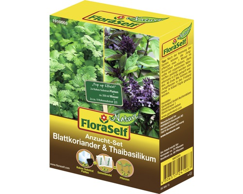 FloraSelf Set semanare coriandru/busuioc thai