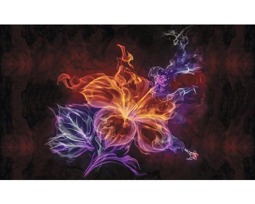 Fototapet vlies Floare de foc 416x254 cm