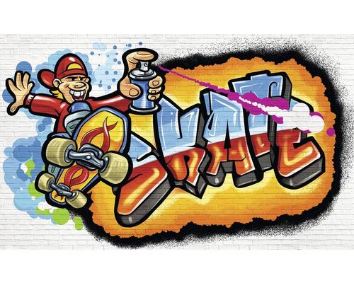 Fototapet hartie Graffiti Skate 254x184 cm